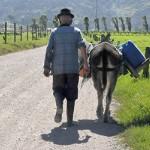 Cycle: Técnica 2.  Para cabalgar se necesita un caballo